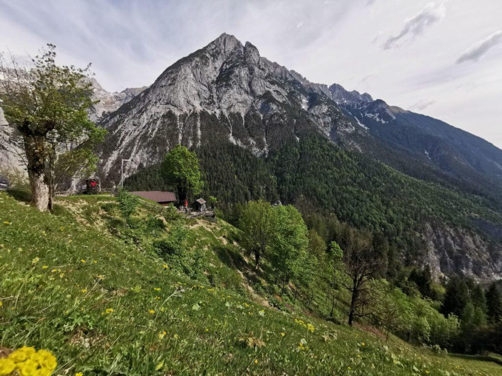 Die Gan Alm mit dem imposanten Karwendelgebirge